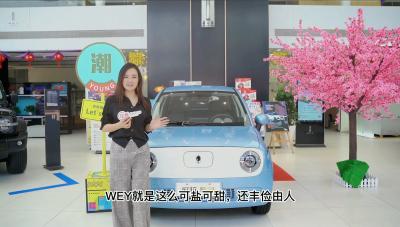 深圳市宝安为众达WEY宝安店