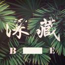 深藏B.E实体(只做高端)